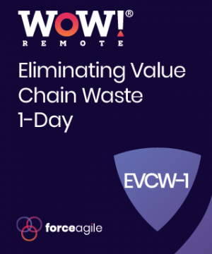 WoW! Eliminating Value Chain Waste